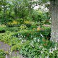 Des paysagistes et jardiniers